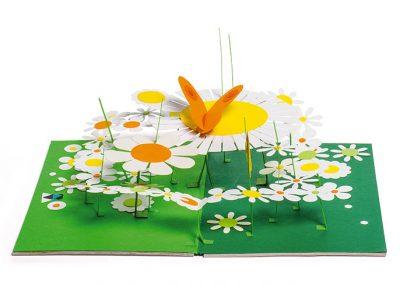 jardin_papillons_1